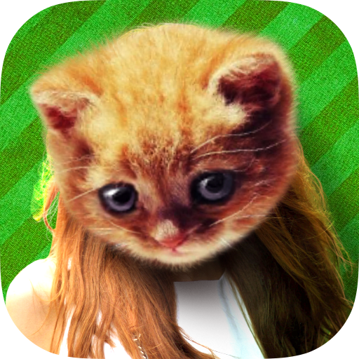 Cat Face Photo (game)