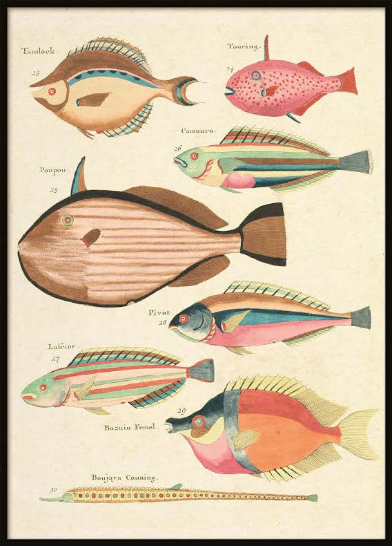 Vintage Fiskar 2, Poster