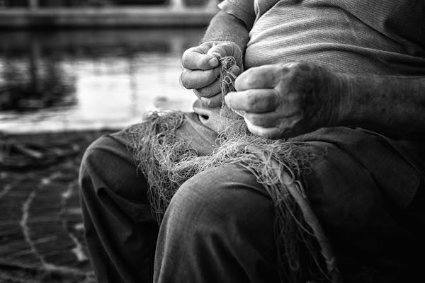 Il gesto di una vita di wallyci
