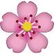 日本好去處 (櫻花、紅葉、花卉地點) - Androidアプリ