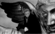 Photo: WINGS OF DESIRE, WINGS OF SHELTER TOO