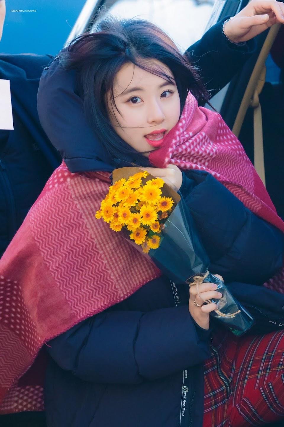 tinychaeyoung14