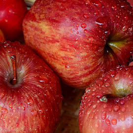 Apples  by Asif Bora - Food & Drink Fruits & Vegetables (  )
