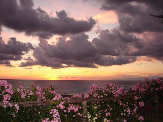Clouds & Flowers di saschag4