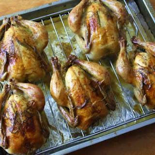 Cornish Game Hen Dry Rub Recipes.