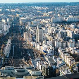 Paris by Andrew Moore - City,  Street & Park  Vistas (  )