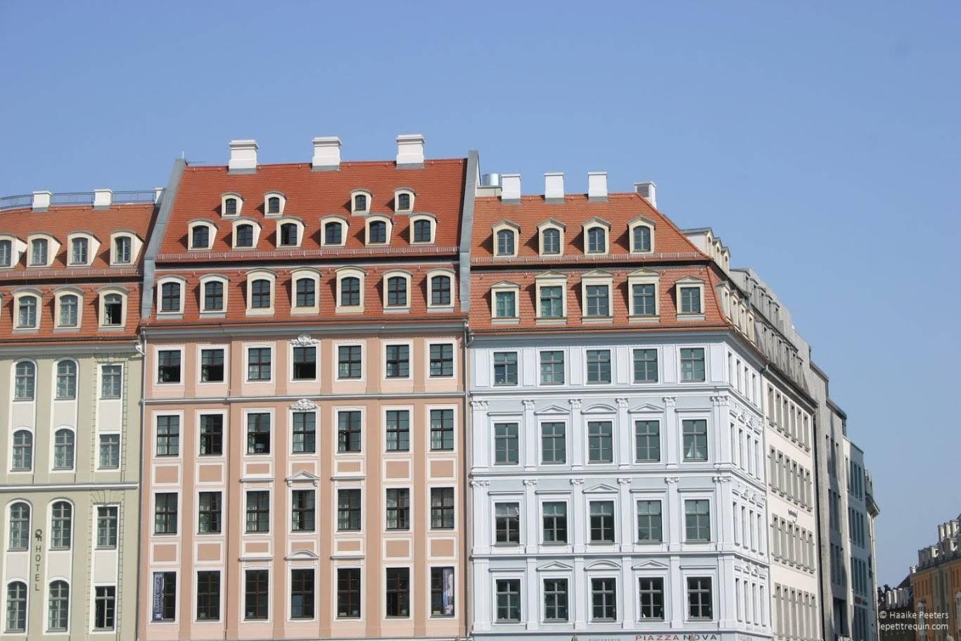 Neumarkt Dresden (Le petit requin)