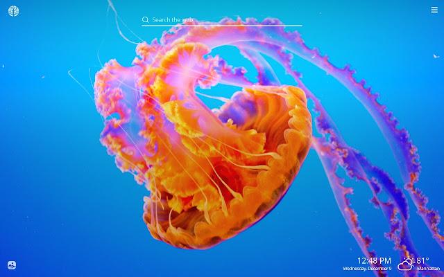 Jellyfish HD Wallpapers New Tab Theme