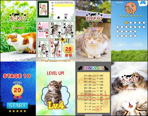 玩免費紙牌APP|下載Cats Card Playing app不用錢|硬是要APP