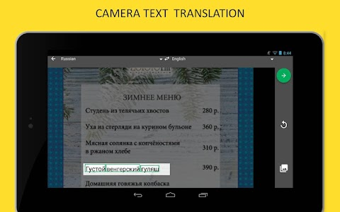 Online-Translator.com screenshot 8