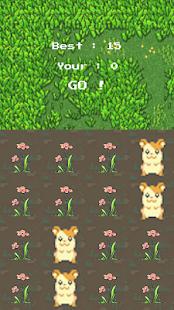 HamsterBuster - náhled