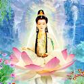 Guanyin Buddha live wallpaper icon
