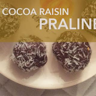Vegan Nut Cocoa Pumpkin Raisin Pralines