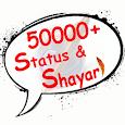 Hindi status and shayari 2017