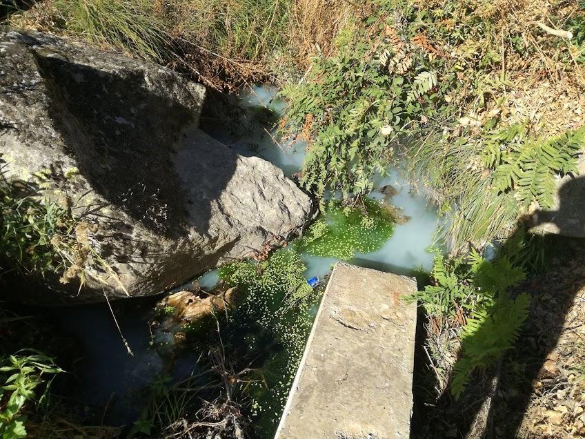 Bloco de Esquerda denuncia descargas poluentes no rio Neto em Cambres