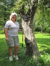Photo: Next stop: the Fort Worth Botanic Gardens to meet up with Master Gardener and Citizen Forester, Marilyn Sallee, shown here next to the state champion green hawthorn (Crataegus viridis).