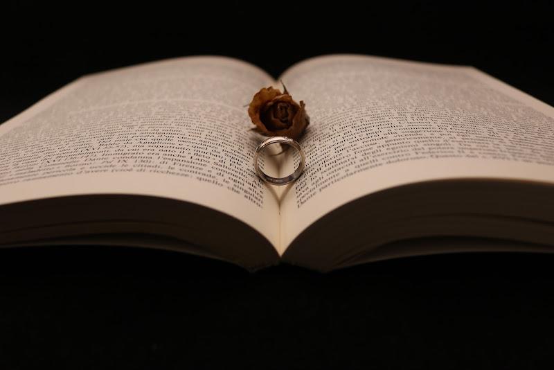 Libro,Rosa & Anello di Juri Tamborelli