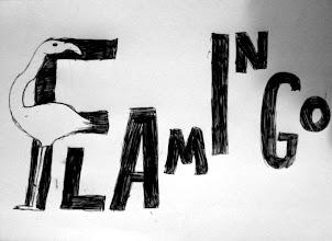 Photo: Eve Rowland -  F for flamingo