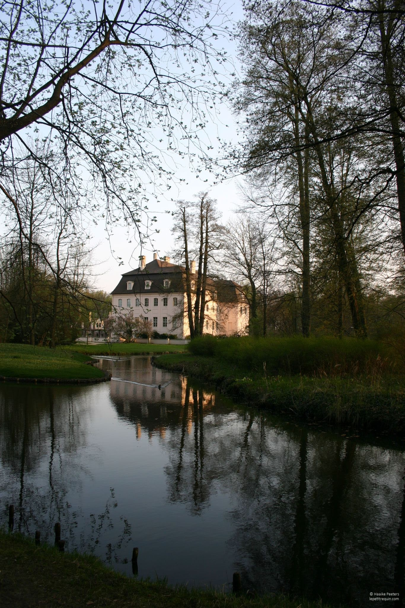 Schloss Park Branitz (Le petit requin)