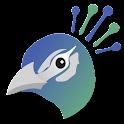 Peacock - Mock Interview Prep icon