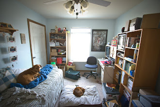 Photo: bedroom #1 (10'x14') we currently use it as an office. Say hello to our dog Figgins and our cat Willy :) There is a closet in each bedroom