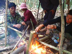 Photo: Bamboo cooking in the camp-3 Days Nam Ha Jungle Camp in Luang Namtha, Laos