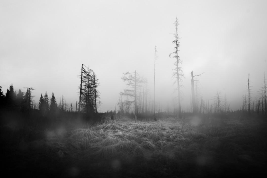 Composicion en fotografia de paisaje
