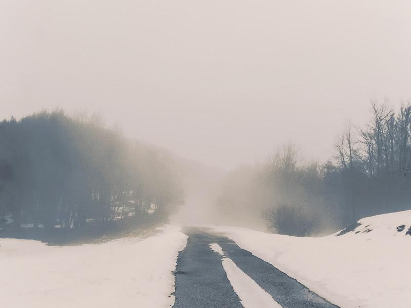 Strada innevata di noemi_dmc