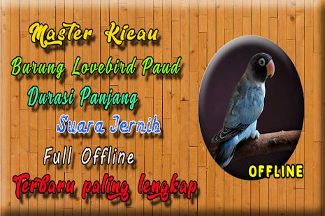 Masteran Lovebird Paud Ngekek Panjang MP3 - náhled