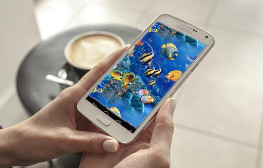 App: Pocket Warwick | Warwick Davis Official Website