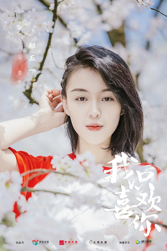 Le Coup De Foudre / I Only Like You China Web Drama