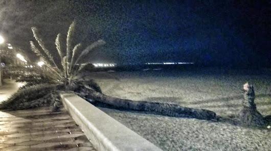 El temporal Elsa provoca destrozos en la provincia