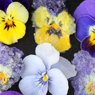 Crystallized Violets Recipe