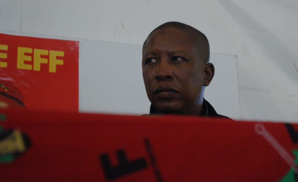 Julius Malema plays Father Christmas as he begs for votes