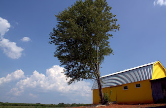 Photo: We are very fond of our yellow outbuildings!!!