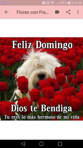 Download Flores Con Frases Cristianas Google Play Softwares