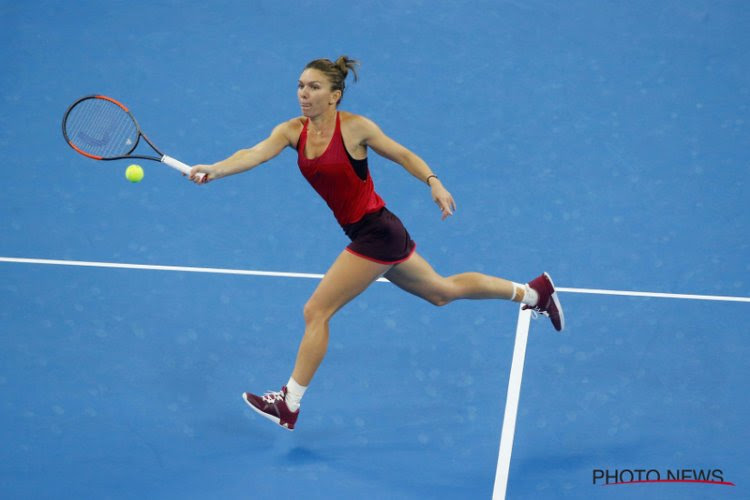 'Simona Halep stuurt haar kat naar de US Open'