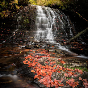 Spoonauger Falls by Tom Moors - Landscapes Waterscapes ( water, red, spoonauger falls, oconee, waterfall, leaves, south carolina )