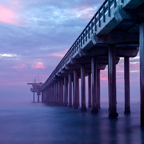 Cotton Candy Pier by Christian Wicklein - Landscapes Sunsets & Sunrises ( clouds, pier, ocean, beach, sunrise )