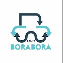 Bora Bora Driver Download on Windows