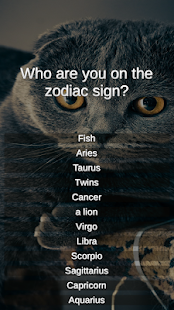 Test: The breed of cats in the sign of the zodiac - náhled