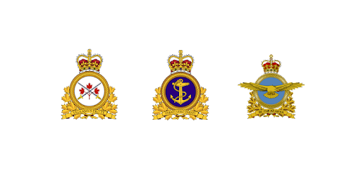The app will help you to learn military rank and insignia of the Canada