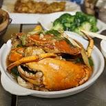 delicious crab at Hing Kee Restaurant in Kowloon in Hong Kong, , Hong Kong SAR