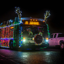 Bug Bus by Darren Sutherland - Public Holidays Christmas
