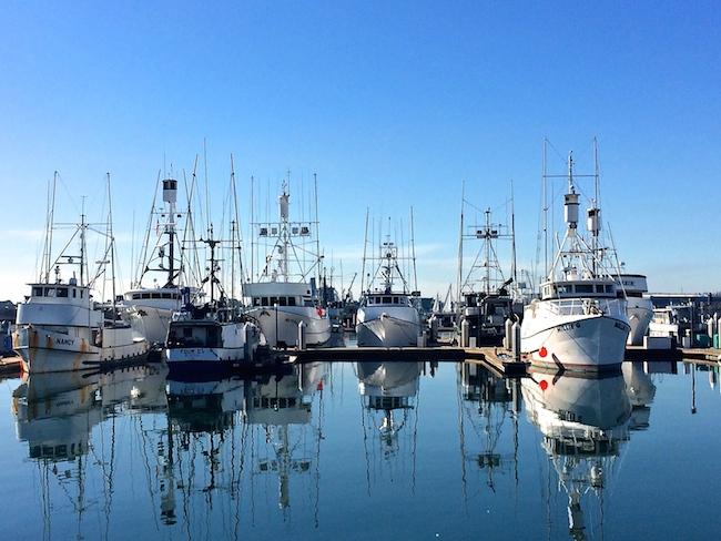 San Diego Harbor di alessandra_cervetti
