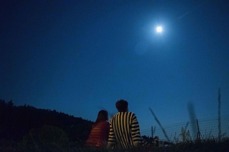 Under the moonlight di marconardini