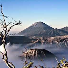 Bromo Mountain by Muchamad Bashir - Landscapes Mountains & Hills ( hills, mountains, landscape )