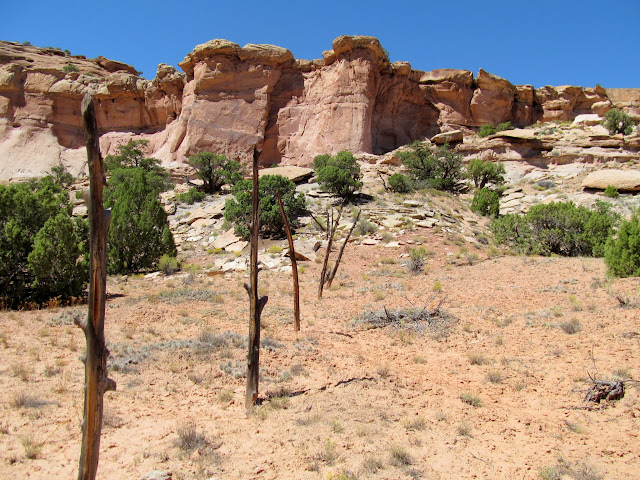 Old fence used to corral stock in a box canyon