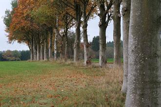 Photo: Paysage d'automne