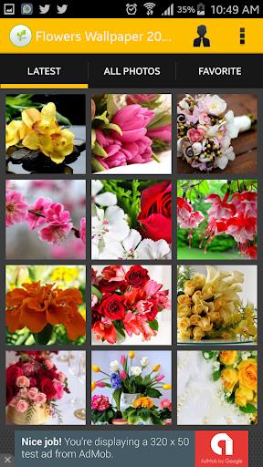 Flowers Wallpaper 2016